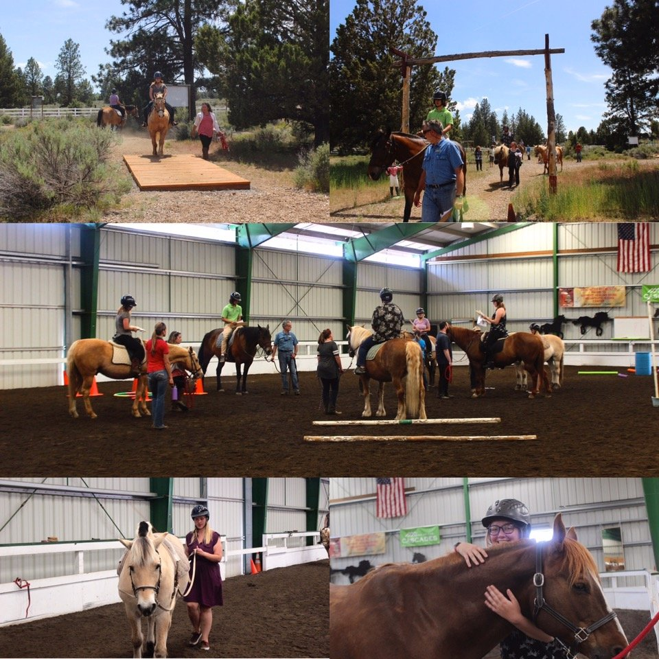 Healing Reins photo collage
